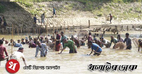 কমলগঞ্জে ধলই নদীতে পলো বাওয়া উৎসবে মেতেছে সৌখিন জেলেরা